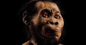 new-human-ancestors1